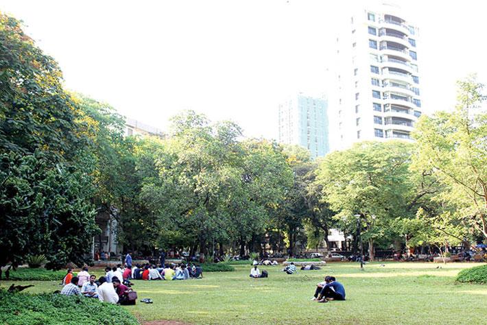 Greening Mumbai