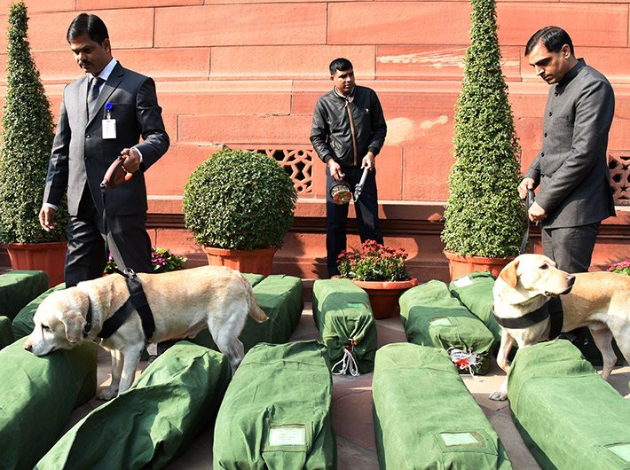 Sniffer dogs check the bundles of the budget documents in the parliament complex ahead of the budget presentation.