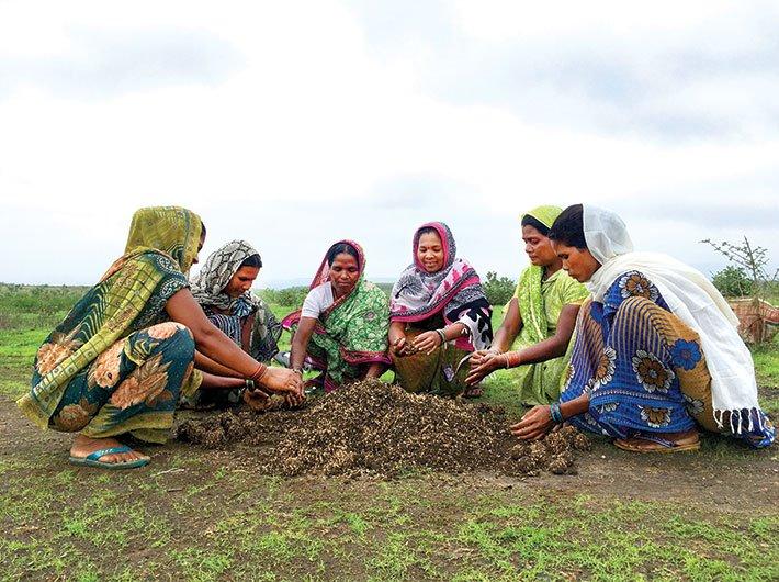 Women preparing grass seed balls in Khalaudi village. (Photo: Archana Mishra)