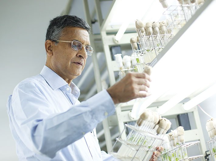 Deepak Pental, scientist, Delhi University
