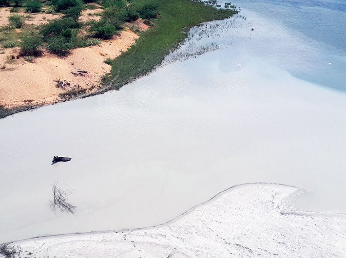 Obra thermal power plant in Uttar Pradesh discharging fly ash slurry directly into the Renuka river. The area has been noted for mercury contamination cases in a research published by CSE in 2012